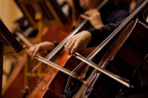 cello section closeup