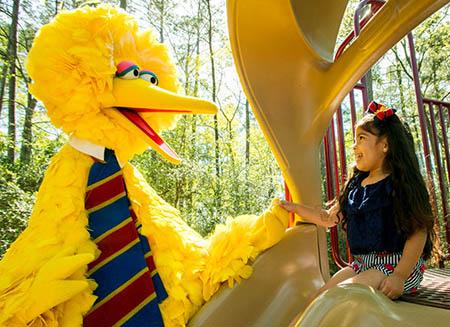 Big Bird helps a child down a slide